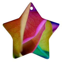 Rainbow Roses 16 Star Ornament (Two Sides)