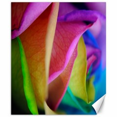 Rainbow Roses 16 Canvas 8  X 10  (unframed)