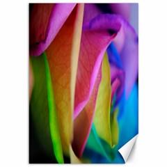 Rainbow Roses 16 Canvas 12  x 18  (Unframed)