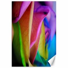 Rainbow Roses 16 Canvas 20  x 30  (Unframed)