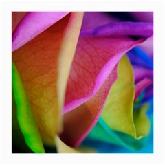 Rainbow Roses 16 Glasses Cloth (Medium, Two Sided)