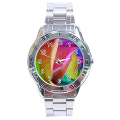 Rainbow Roses 16 Stainless Steel Watch