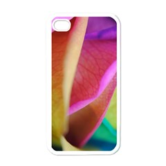 Rainbow Roses 16 Apple Iphone 4 Case (white)
