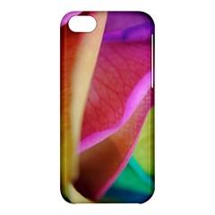 Rainbow Roses 16 Apple iPhone 5C Hardshell Case