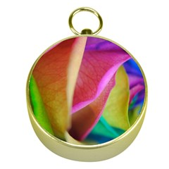 Rainbow Roses 16 Gold Compass