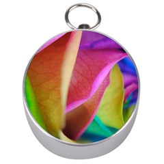 Rainbow Roses 16 Silver Compass