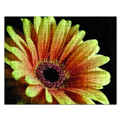 Yellow Orange Gerbera Daisy Jigsaw Puzzle (Rectangle)