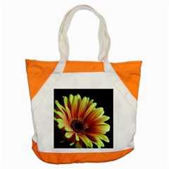 Yellow Orange Gerbera Daisy Accent Tote Bag