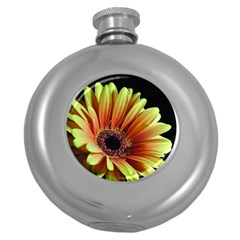 Yellow Orange Gerbera Daisy Hip Flask (Round)