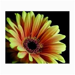 Yellow Orange Gerbera Daisy Glasses Cloth (Small, Two Sided)
