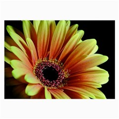 Yellow Orange Gerbera Daisy Glasses Cloth (Large, Two Sided)