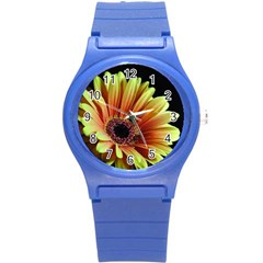 Yellow Orange Gerbera Daisy Plastic Sport Watch (Small)