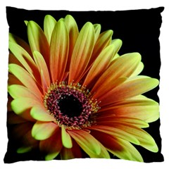 Yellow Orange Gerbera Daisy Large Cushion Case (two Sided)
