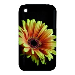 Yellow Orange Gerbera Daisy Apple Iphone 3g/3gs Hardshell Case (pc+silicone)