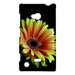 Yellow Orange Gerbera Daisy Nokia Lumia 720 Hardshell Case