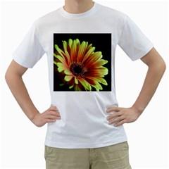 Yellow Orange Gerbera Daisy Men s T-Shirt (White)