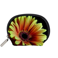 Yellow Orange Gerbera Daisy Accessory Pouch (Small)