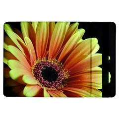 Yellow Orange Gerbera Daisy Apple iPad Air Flip Case