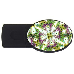 Neo Noveau Style Background Pattern 4gb Usb Flash Drive (oval)