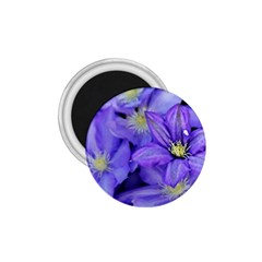 Purple Wildflowers For Fms 1 75  Button Magnet