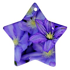 Purple Wildflowers For Fms Star Ornament