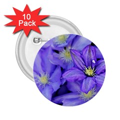 Purple Wildflowers For Fms 2 25  Button (10 Pack)