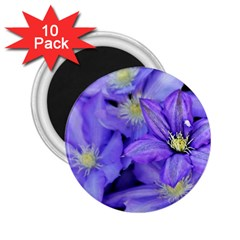 Purple Wildflowers For Fms 2 25  Button Magnet (10 Pack)