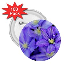 Purple Wildflowers For Fms 2 25  Button (100 Pack)