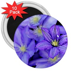 Purple Wildflowers For Fms 3  Button Magnet (10 pack)