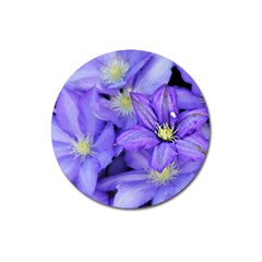 Purple Wildflowers For Fms Magnet 3  (Round)