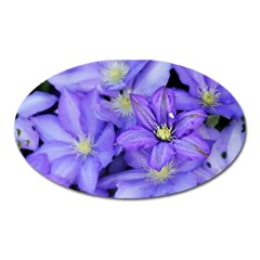 Purple Wildflowers For Fms Magnet (Oval)