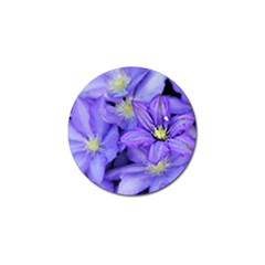 Purple Wildflowers For Fms Golf Ball Marker 4 Pack