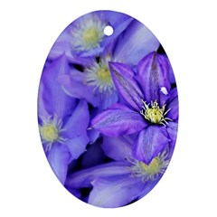 Purple Wildflowers For Fms Oval Ornament (two Sides)