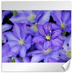 Purple Wildflowers For Fms Canvas 20  X 20  (unframed)