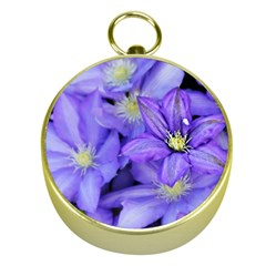 Purple Wildflowers For Fms Gold Compass
