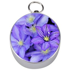 Purple Wildflowers For Fms Silver Compass