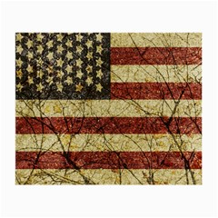 Vinatge American Roots Glasses Cloth (small, Two Sided)
