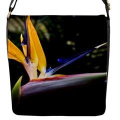 Kangaroo Paw Messenger Bag (Small)
