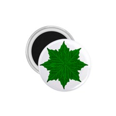 Decorative Ornament Isolated Plants 1.75  Button Magnet