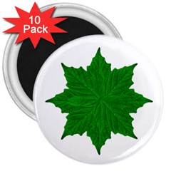 Decorative Ornament Isolated Plants 3  Button Magnet (10 pack)