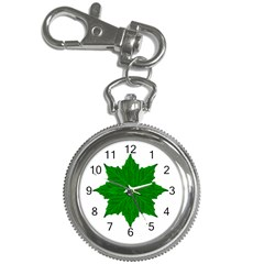 Decorative Ornament Isolated Plants Key Chain Watch