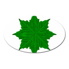 Decorative Ornament Isolated Plants Magnet (oval)
