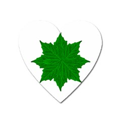 Decorative Ornament Isolated Plants Magnet (heart)