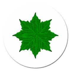 Decorative Ornament Isolated Plants Magnet 5  (round)
