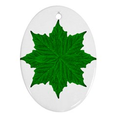 Decorative Ornament Isolated Plants Oval Ornament (Two Sides)