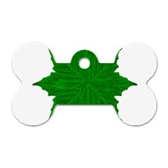 Decorative Ornament Isolated Plants Dog Tag Bone (Two Sided)