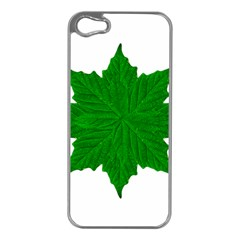 Decorative Ornament Isolated Plants Apple Iphone 5 Case (silver)