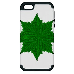 Decorative Ornament Isolated Plants Apple Iphone 5 Hardshell Case (pc+silicone)