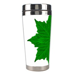 Decorative Ornament Isolated Plants Stainless Steel Travel Tumbler