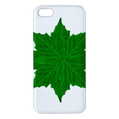 Decorative Ornament Isolated Plants Iphone 5s Premium Hardshell Case